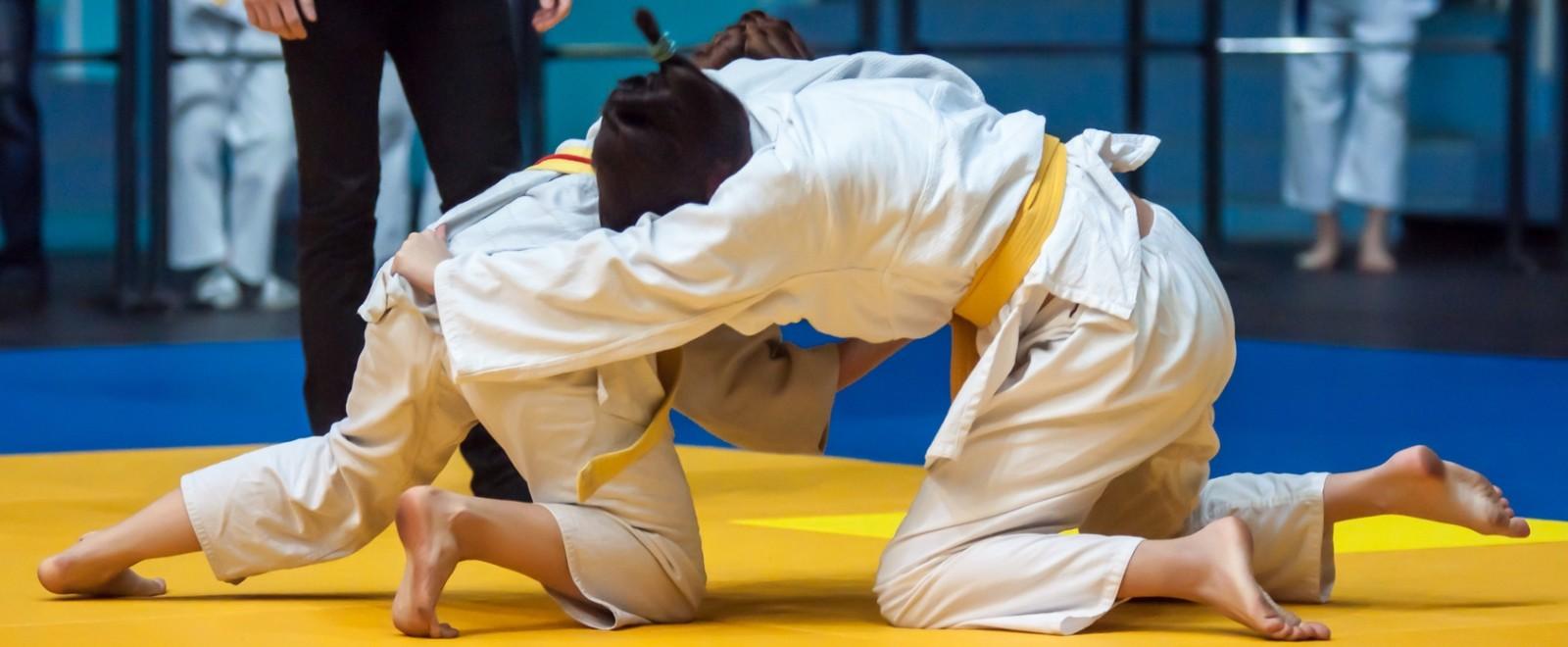 judo_f_84422247